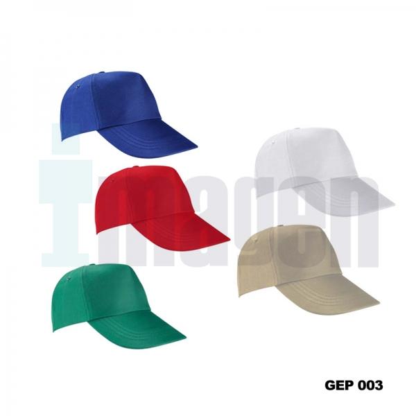 GEP 003