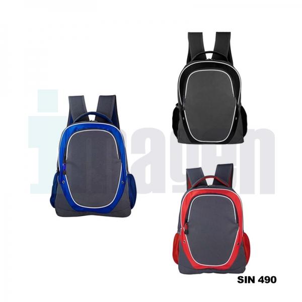 SIN 490